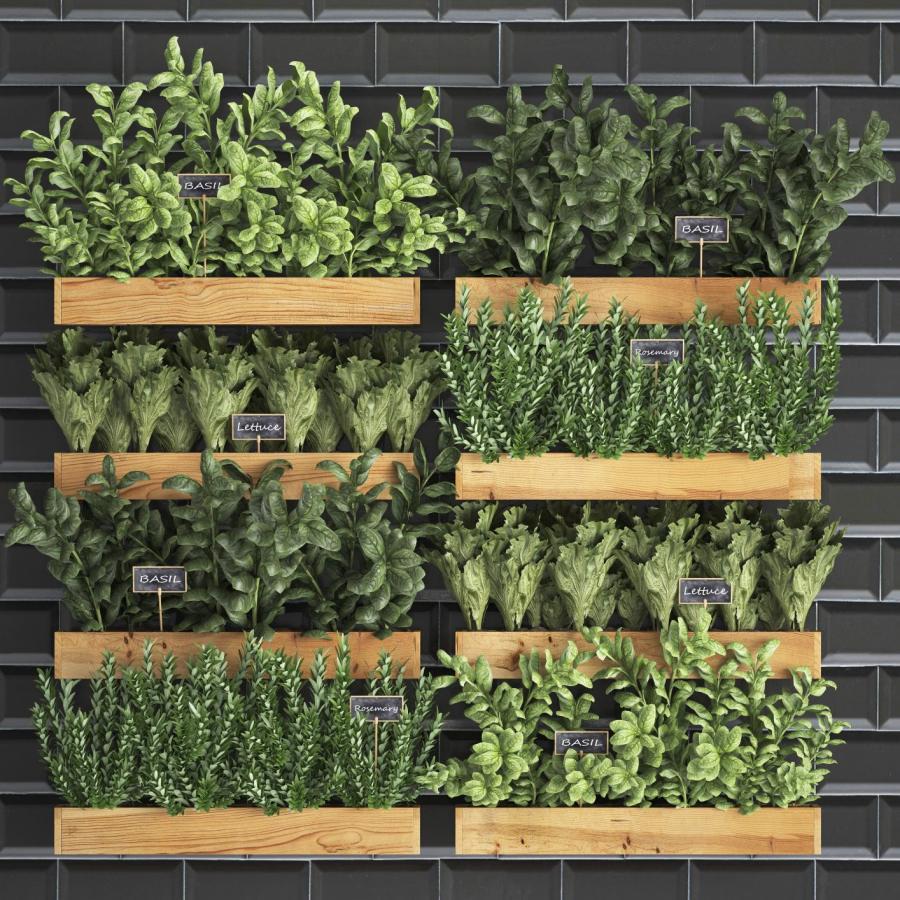 Ideas y beneficios de tener un huerto vertical en tu cocina