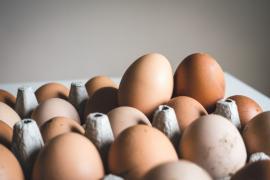 Los beneficios del huevo en el desayuno