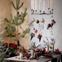 2020_poinsettia_01000_Christmas_Green_Spirit_01