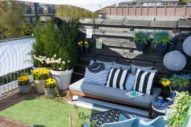 Jardín de bulbos de flor en el balcón o la terraza