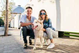 La custodia de las mascotas tras un divorcio