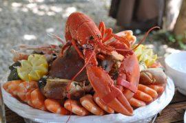 Todo lo que hay que saber sobre el marisco: propiedades, dudas, colesterol, anisaki.