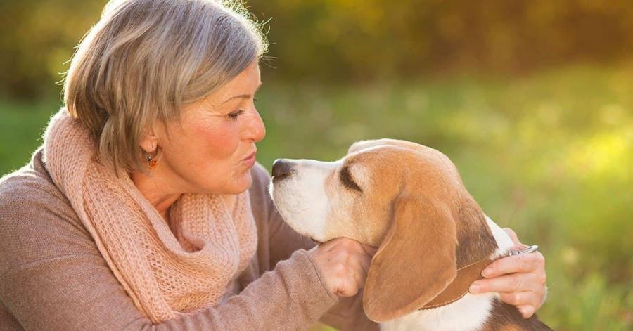 Grandes beneficios terapéuticos de tener una mascota