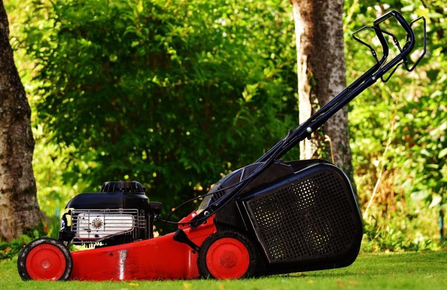Seis tips infalibles para cuidar tu jardín cuando llega el buen tiempo, según eBay