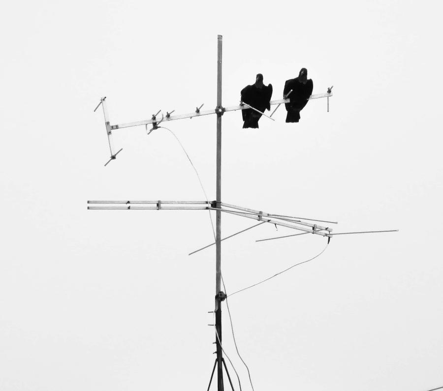 ¿Cómo funciona la antena del televisor?