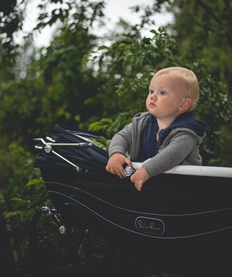 ¿Cómo elegir un carrito de bebé?